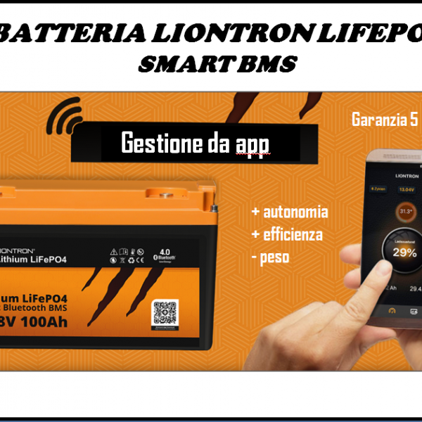 BATTERIA LIONTRON  LIFEPO4 SMART BMS